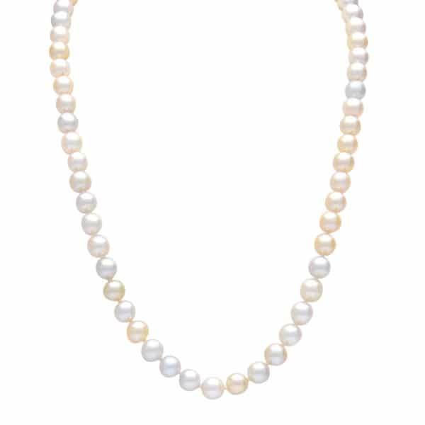 multi coloured gold akoya pearl strand
