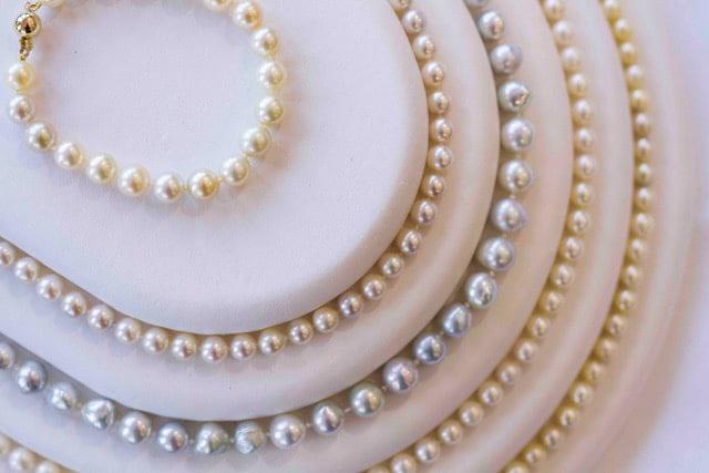 Broken Bay Pearls at centre of new study